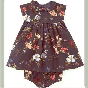 Edgehill Collection dress
